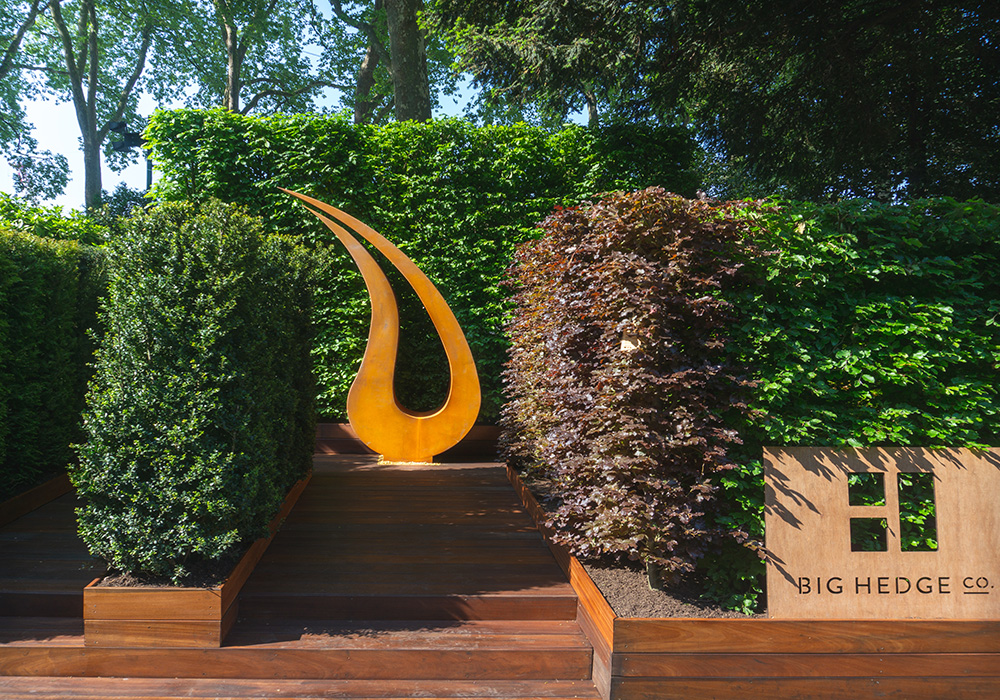 The RHS Chelsea Flower show 2018